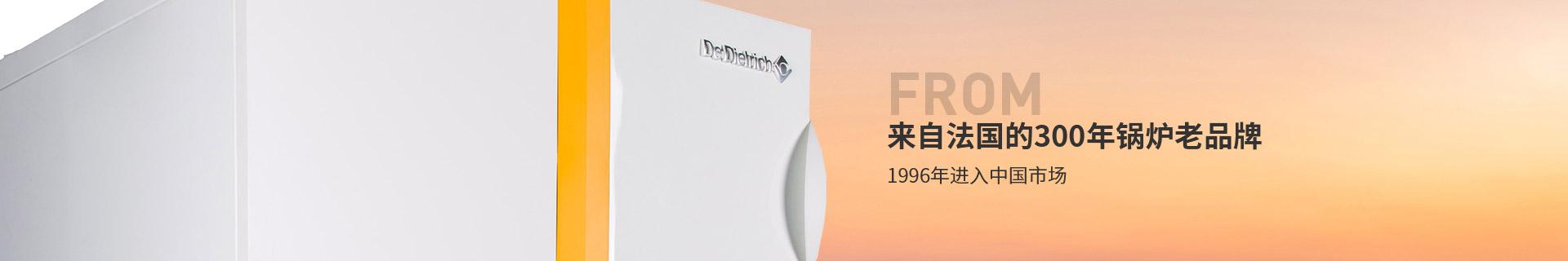 东方永捷德地氏锅炉来自法国300年锅炉老品牌